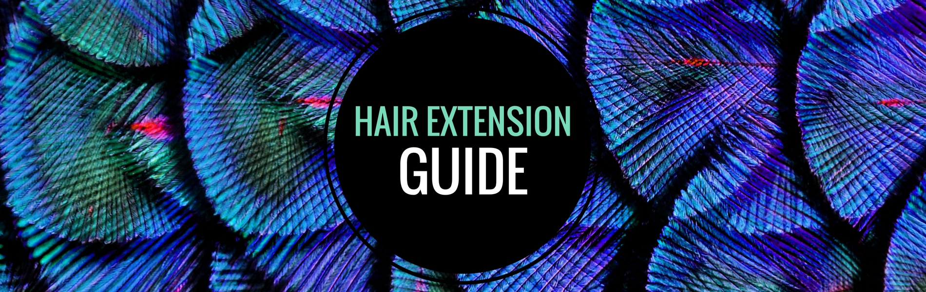 Hair Extension Guide_Banner